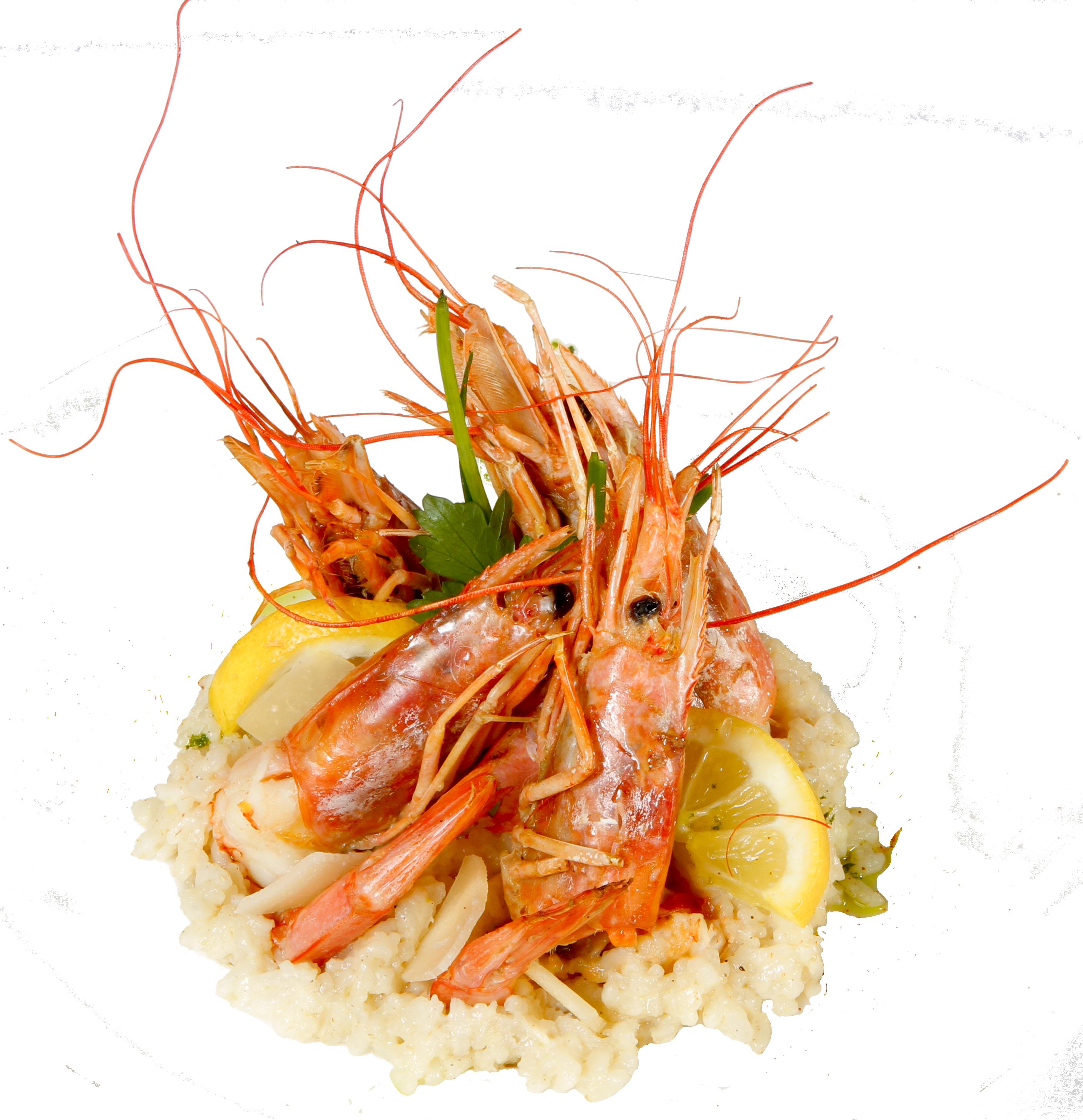 gambas grillees a la placha - cap d'agde - arlequin - port -spécialite poisson -